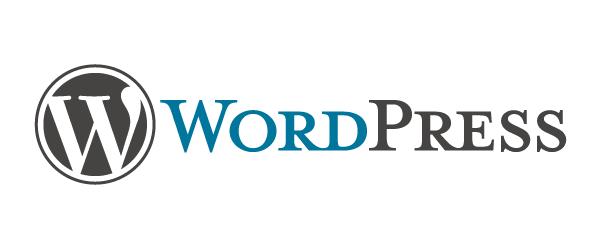 Wordpress Custom Website Blog Image